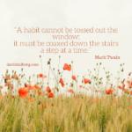 Habit Steps